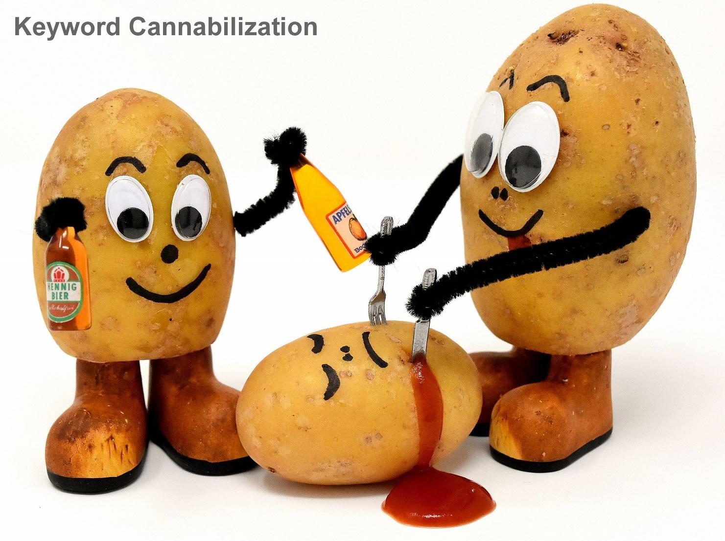 keyword cannibilization image